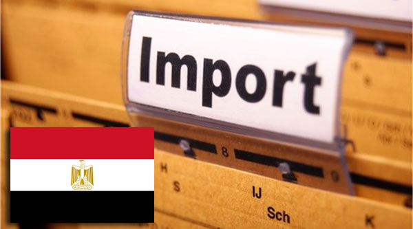 IOR Importer Of Record Services Egypt