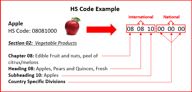 Apple HS Code - GCE Logistic Importer of Record HS Code